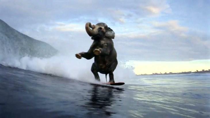 SurfingElephant