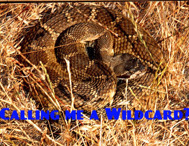 wpid-rattlesnake.jpg