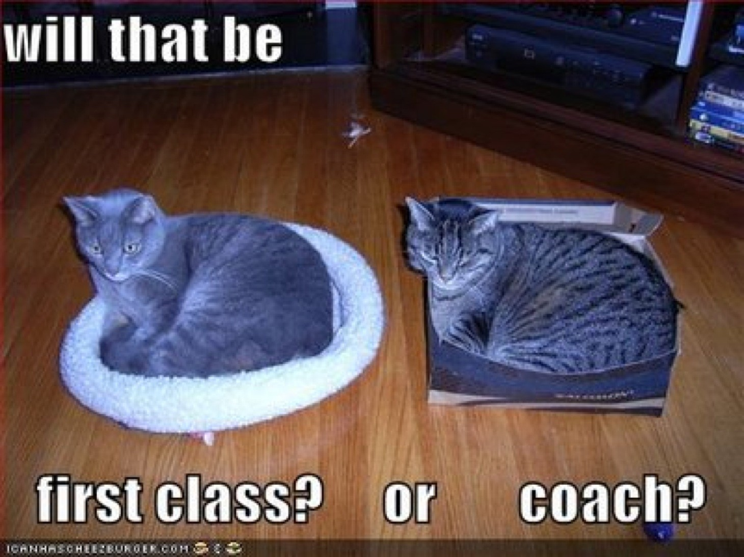 wpid-cat-firstclass-or-coach.jpg