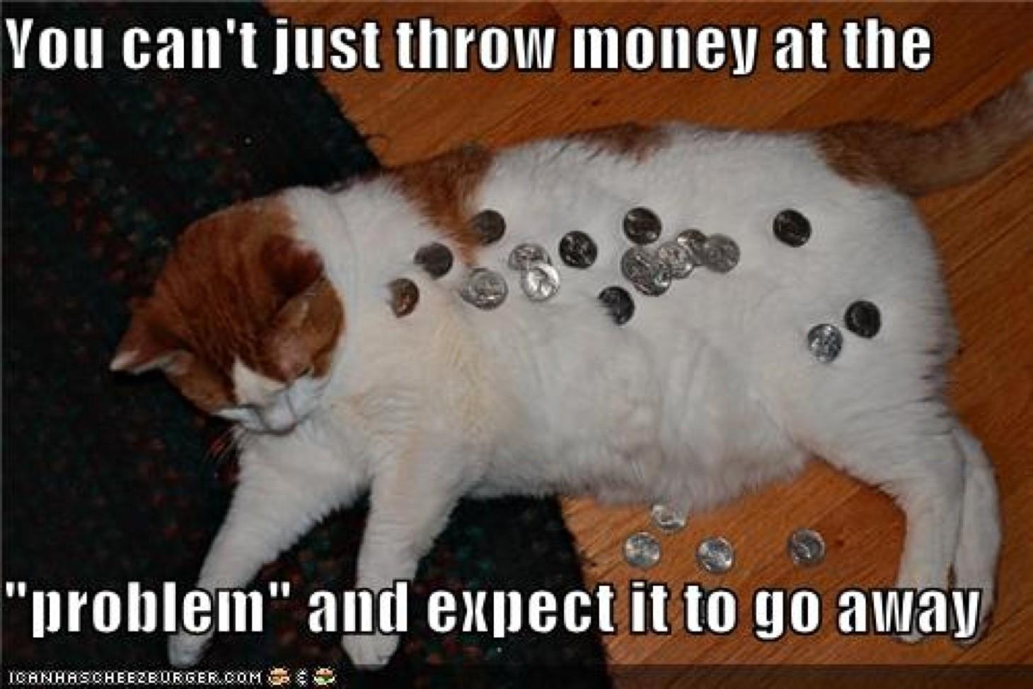 wpid-throw-money-at-problems-lolcat.jpg