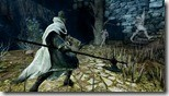 Dark Souls 2 (21)