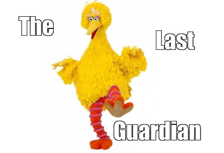 BigBird.jpg