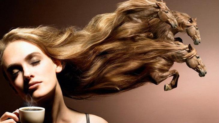 horse-hair.jpg