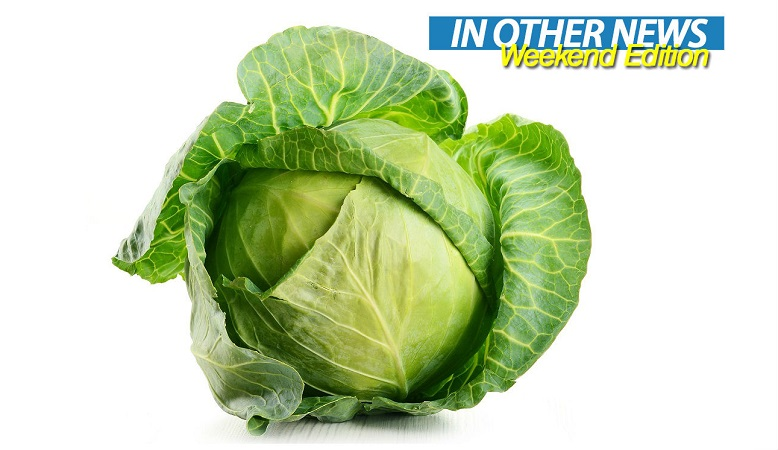 Cabbage ION
