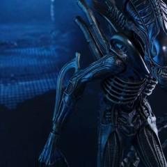 Alien Warrior, come out to plaaaaaay…