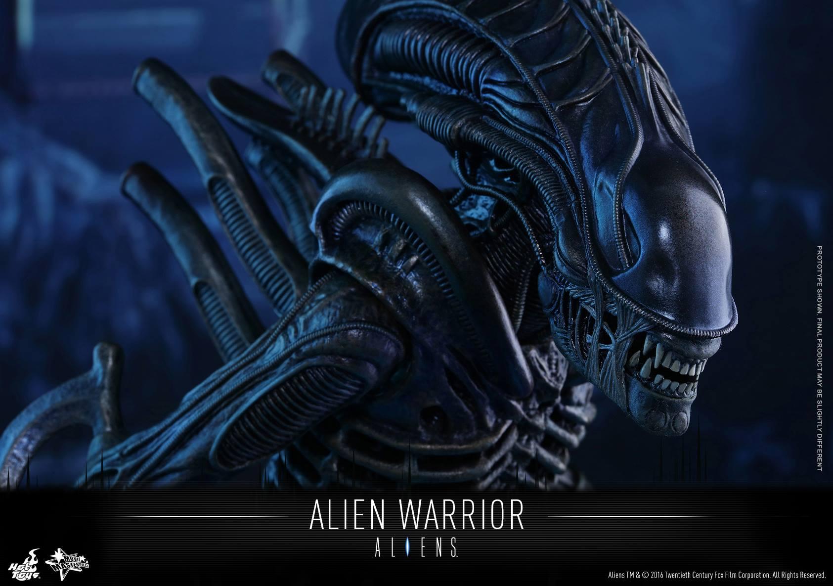 xenomorph warrior head - photo #40