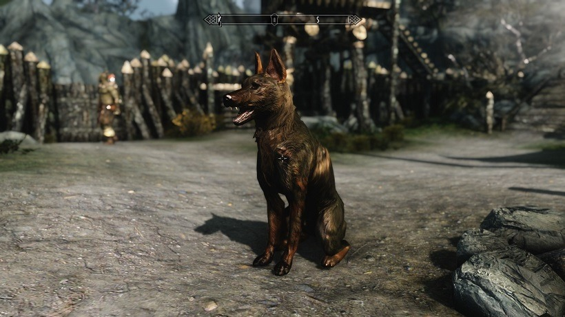 Adopting A Dog In Skyrim