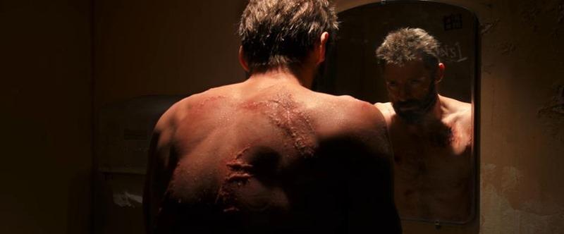 Wolverine (3)