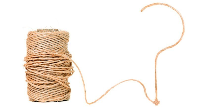 straight piece of string - 769×558