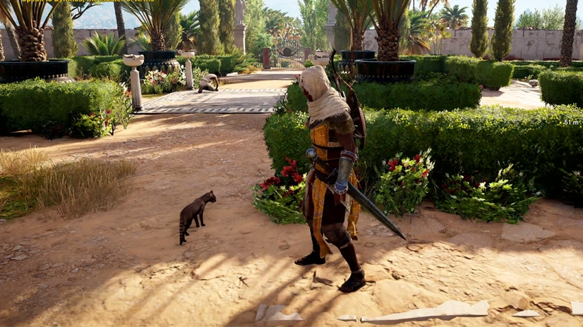 Assassin S Creed Origins Can You Pet The Cats