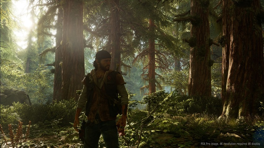 Days Gone Delayed to Avoid Horde of New Releases on PS4
